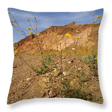 Death Valley Superbloom 202 Throw Pillow