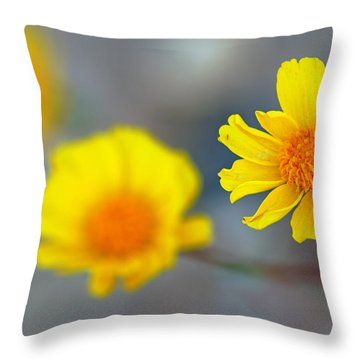 Death Valley Superbloom 204 Throw Pillow