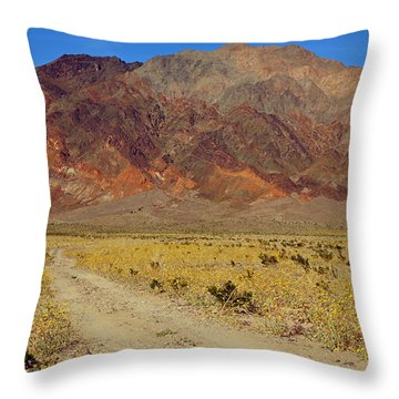 Death Valley Superbloom 205 Throw Pillow