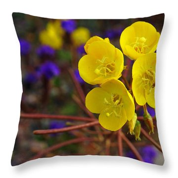 Death Valley Superbloom 206 Throw Pillow