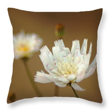 Death Valley Superbloom 303 Throw Pillow