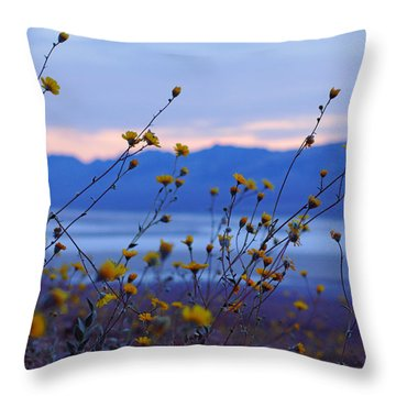 Death Valley Superbloom 304 Throw Pillow