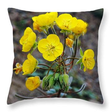 Death Valley Superbloom 306 Throw Pillow