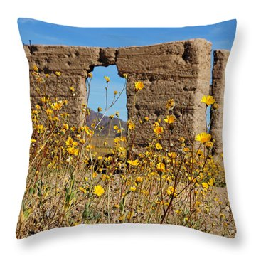 Death Valley Superbloom 404 Throw Pillow