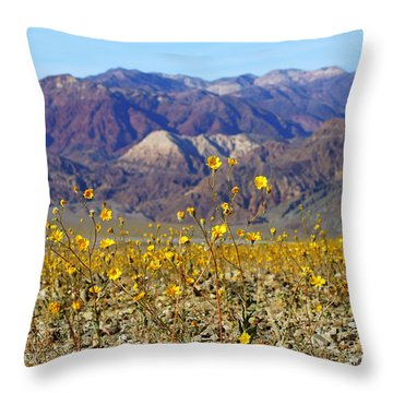 Death Valley Superbloom 405 Throw Pillow