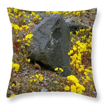 Death Valley Superbloom 406 Throw Pillow