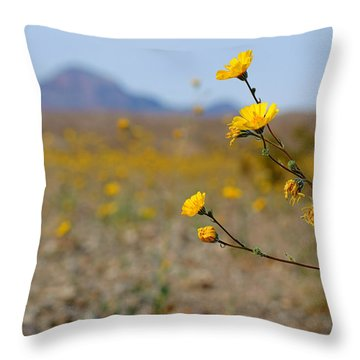 Death Valley Superbloom 501 Throw Pillow