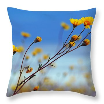 Death Valley Superbloom 502 Throw Pillow