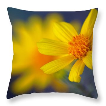 Death Valley Superbloom 503 Throw Pillow