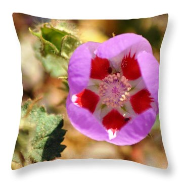 Death Valley Superbloom 504 Throw Pillow