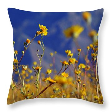 Death Valley Superbloom 505 Throw Pillow