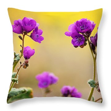 Throw Pillow featuring the photograph Death Valley Superbloom 506 by Daniel Woodrum