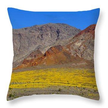 Death Valley Superbloom Throw Pillow