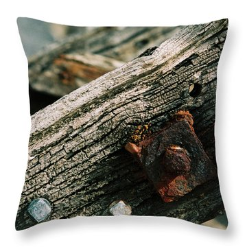 Decaying Ladder Throw Pillow