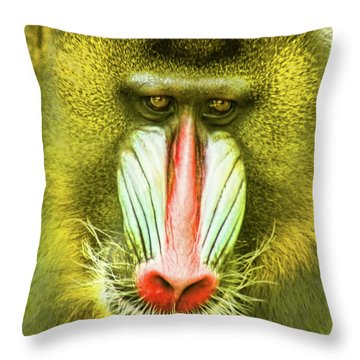 Deceiving Eye Throw Pillow