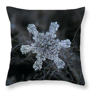 December 18 2015 - Snowflake 1 Throw Pillow