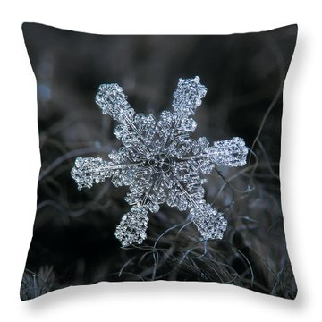 December 18 2015 - Snowflake 1 Throw Pillow
