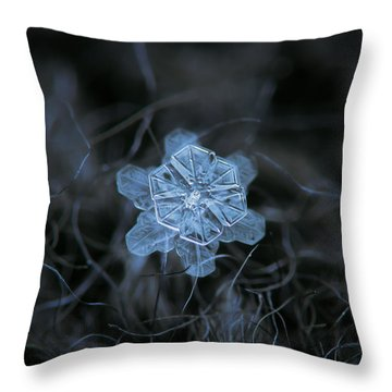 December 18 2015 - Snowflake 2 Throw Pillow