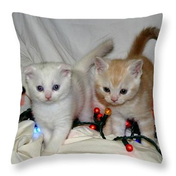 December 2004 Throw Pillow