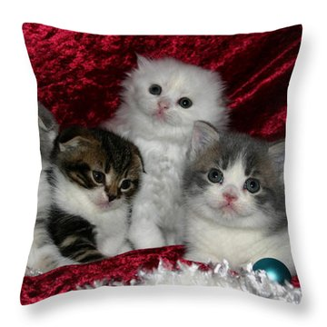 December 2005 Throw Pillow