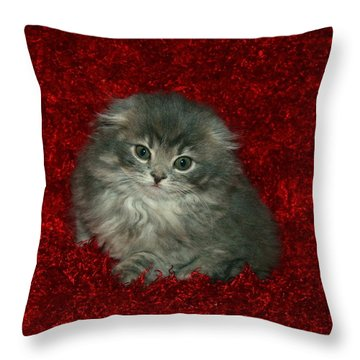 December 2007 Throw Pillow