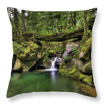 Deception Creek Throw Pillow