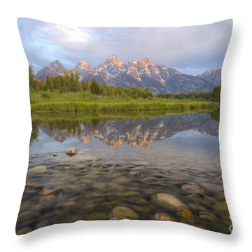 Deceptive Calm Throw Pillow