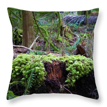 Decomposers Throw Pillow