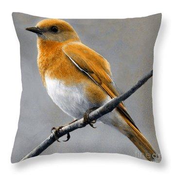 Throw Pillow featuring the mixed media Decorative Bird Mixed Media E11817 by Mas Art Studio