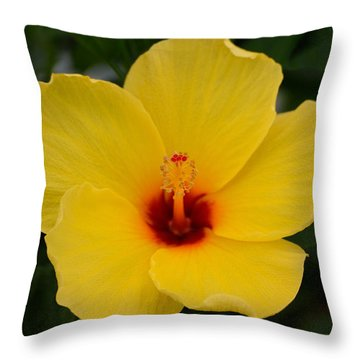Decorative Floral Photo A9416 Throw Pillow