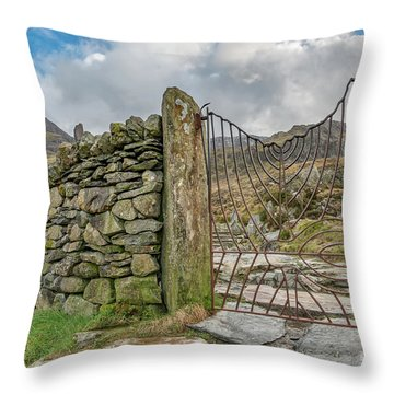 Throw Pillow featuring the photograph Decorative Gate Snowdonia by Adrian Evans