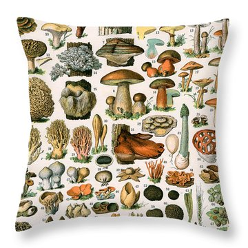 Decorative Print Of Champignons By Demoulin Throw Pillow by American School