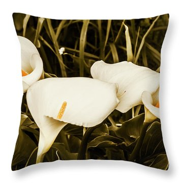 Decorative Spring Garden Throw Pillow