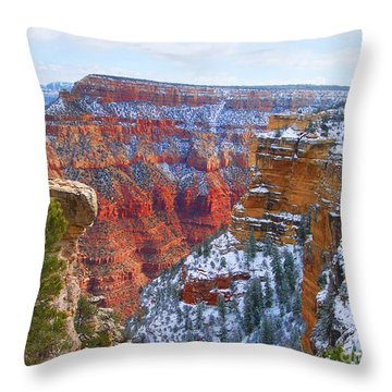 Throw Pillow featuring the photograph Deep And Wide by Roberta Byram