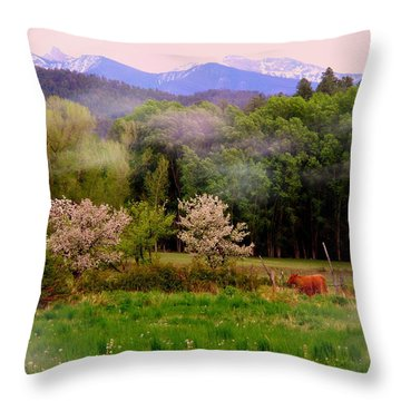 Deep Breath Of Spring El Valle Throw Pillow