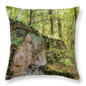 Deep Dark Forest Throw Pillow