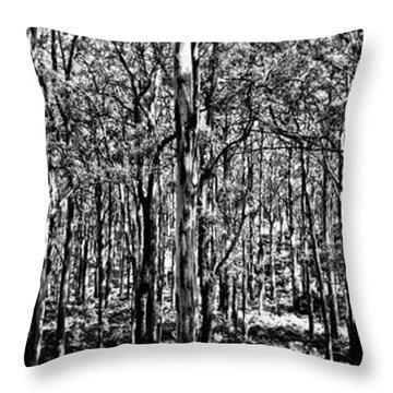Deep Forest Bw Throw Pillow