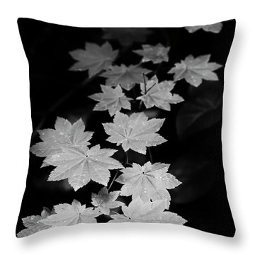 Deep Forest Maple Throw Pillow