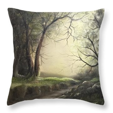Deep Hollow  Throw Pillow
