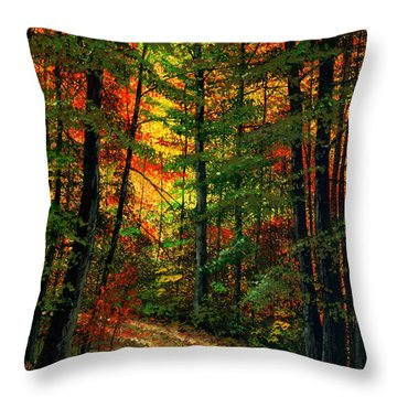 Deep In The Forest Throw Pillow by Frank Wilson