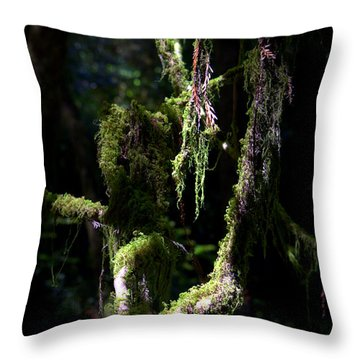 Throw Pillow featuring the photograph Deep In The Forest by Lori Seaman