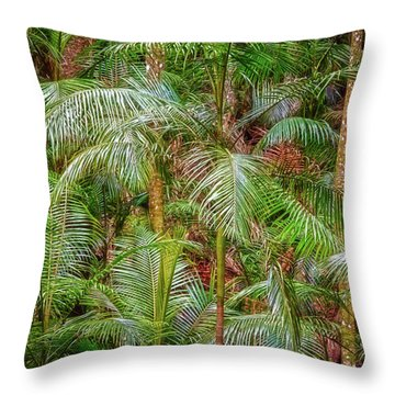 Deep In The Forest, Tamborine Mountain Throw Pillow by Dave Catley