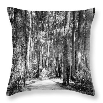 Deep In The Woods  Throw Pillow by Phill Doherty