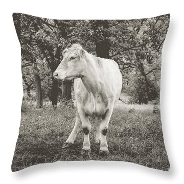 Throw Pillow featuring the photograph Deep In Thought by Viviana  Nadowski
