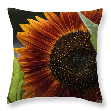 Deep Orange Throw Pillow