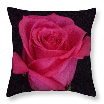 Deep Pink Rose On Black Throw Pillow