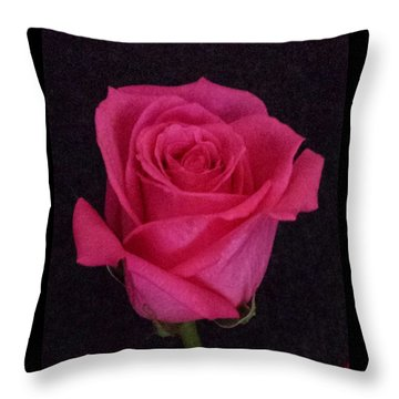 Deep Pink Rose On Black Throw Pillow