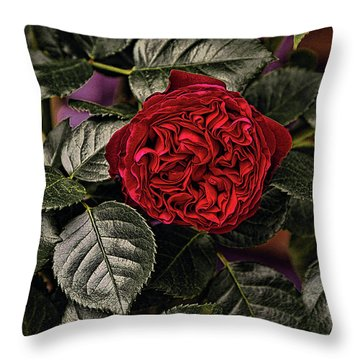 Deep Red Rose Throw Pillow