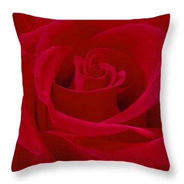 Deep Red Rose Throw Pillow