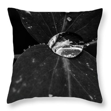 Throw Pillow featuring the photograph Deep Refraction Between Leaves by Darcy Michaelchuk